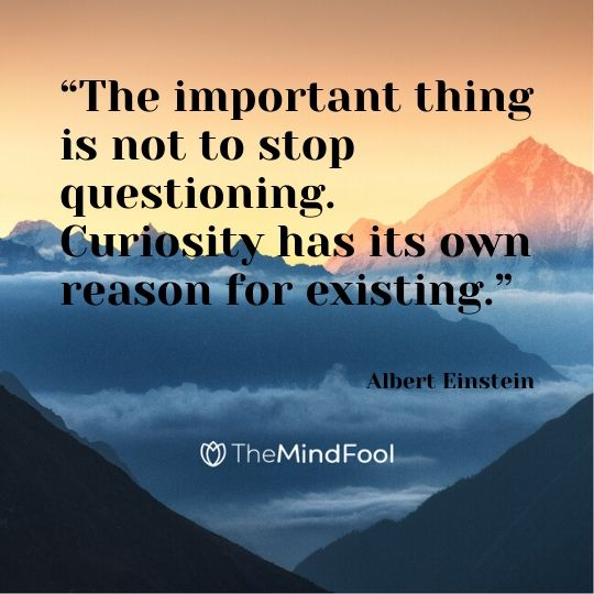 """The important thing is not to stop questioning. Curiosity has its own reason for existing."" - Albert Einstein"