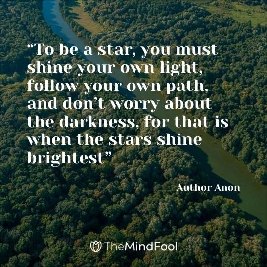 """To be a star, you must shine your own light, follow your own path, and don't worry about the darkness, for that is when the stars shine brightest"" — Author Anon"