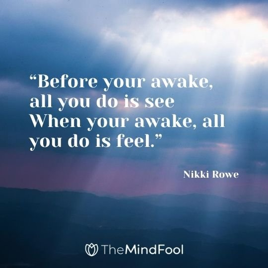 """Before your awake, all you do is see When your awake, all you do is feel."" ― Nikki Rowe"