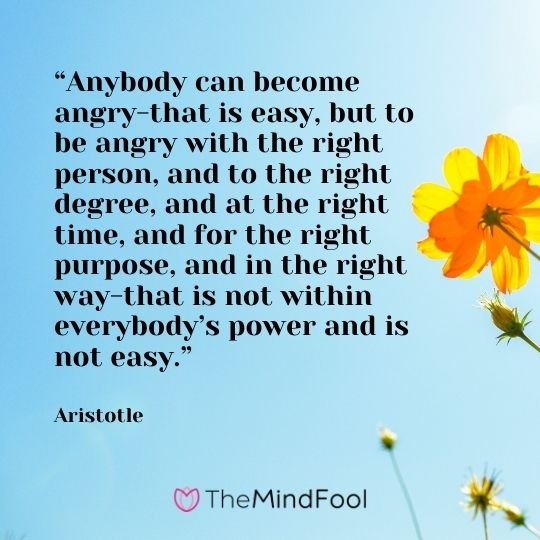 """""""Anybody can become angry-that is easy, but to be angry with the right person, and to the right degree, and at the right time, and for the right purpose, and in the right way-that is not within everybody's power and is not easy."""" – Aristotle"""