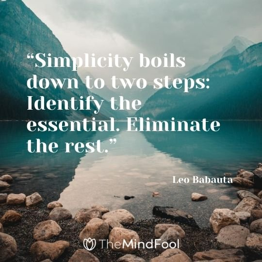 """Simplicity boils down to two steps: Identify the essential. Eliminate the rest."" ― Leo Babauta"