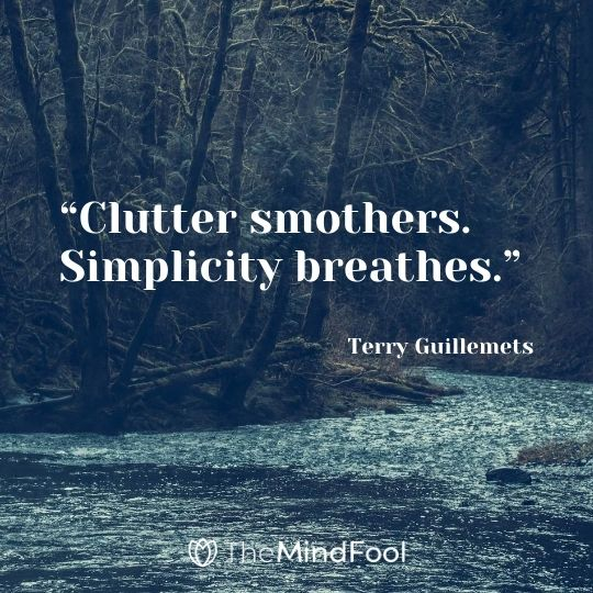 """Clutter smothers. Simplicity breathes."" - Terry Guillemets"