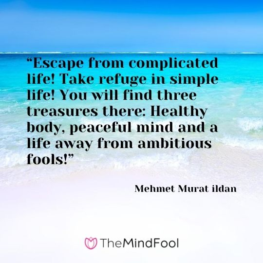 """Escape from complicated life! Take refuge in simple life! You will find three treasures there: Healthy body, peaceful mind and a life away from ambitious fools!"" ― Mehmet Murat ildan"