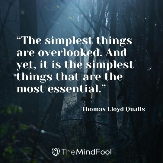 """The simplest things are overlooked. And yet, it is the simplest things that are the most essential."" ― Thomas Lloyd Qualls"