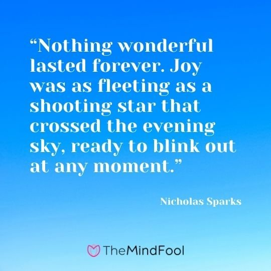 """Nothing wonderful lasted forever. Joy was as fleeting as a shooting star that crossed the evening sky, ready to blink out at any moment."" ― Nicholas Sparks"