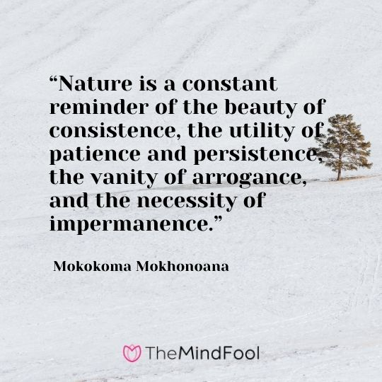 """Nature is a constant reminder of the beauty of consistence, the utility of patience and persistence, the vanity of arrogance, and the necessity of impermanence."" ― Mokokoma Mokhonoana"