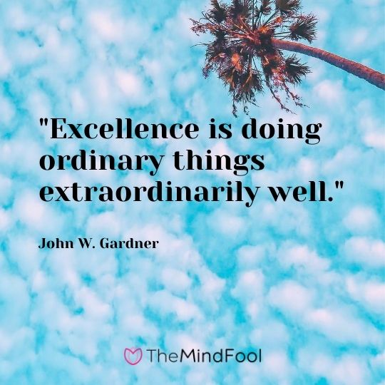 """Excellence is doing ordinary things extraordinarily well."" — John W. Gardner"