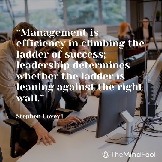 """""""Management is efficiency in climbing the ladder of success; leadership determines whether the ladder is leaning against the right wall."""" – Stephen Covey"""