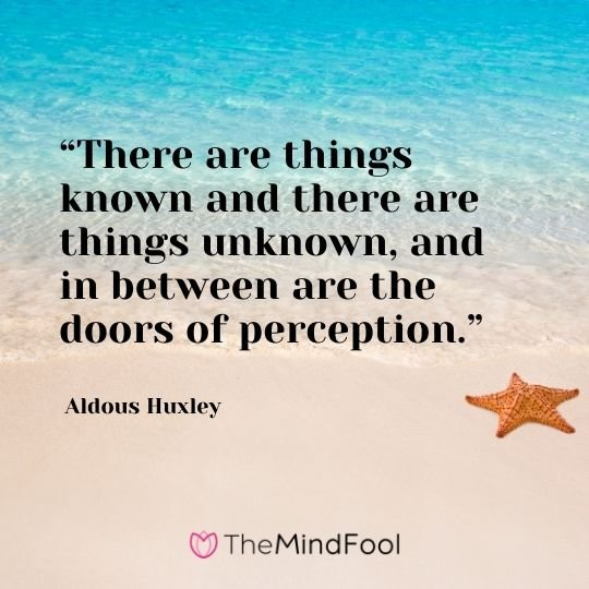 """There are things known and there are things unknown, and in between are the doors of perception."" – Aldous Huxley"