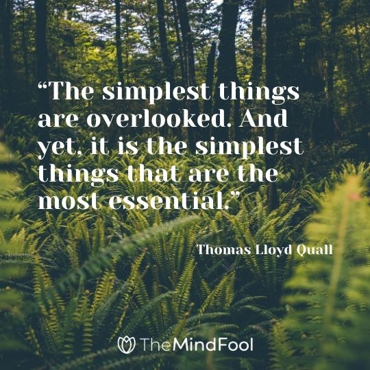 """""""The simplest things are overlooked. And yet, it is the simplest things that are the most essential."""" ― Thomas Lloyd Quall"""