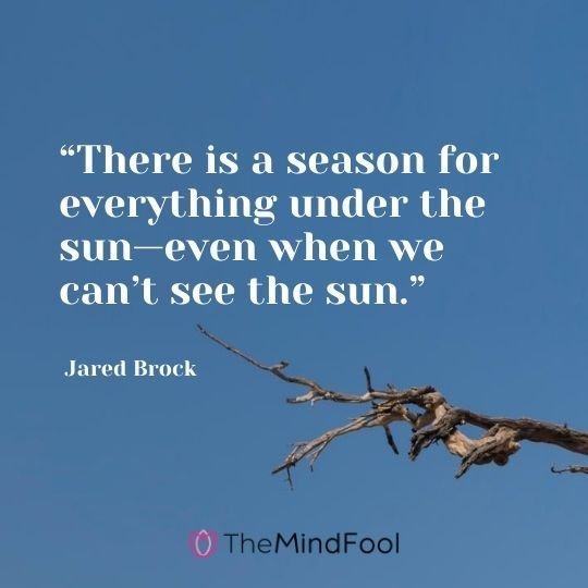 """There is a season for everything under the sun—even when we can't see the sun."" – Jared Brock"