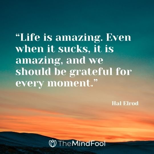"""Life is amazing. Even when it sucks, it is amazing, and we should be grateful for every moment."" – Hal Elrod"
