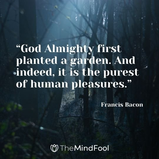 """""""God Almighty first planted a garden. And indeed, it is the purest of human pleasures."""" – Francis Bacon"""