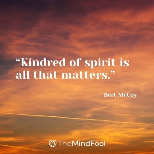"""Kindred of spirit is all that matters."" ― Bert McCoy"
