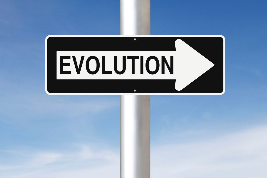 Evolution is the key