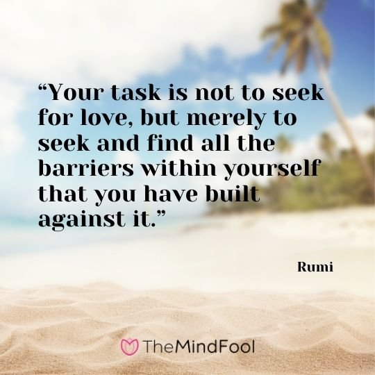 """Your task is not to seek for love, but merely to seek and find all the barriers within yourself that you have built against it."" ― Rumi"