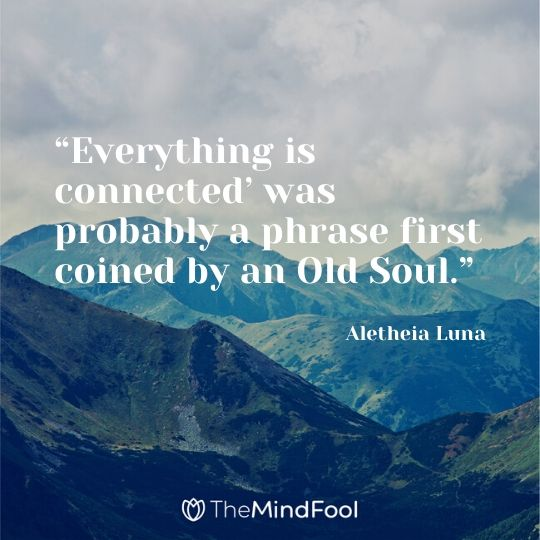 """'Everything is connected' was probably a phrase first coined by an Old Soul."" -Aletheia Luna"