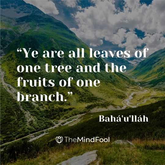 """Ye are all leaves of one tree and the fruits of one branch."" - Bahá'u'lláh"