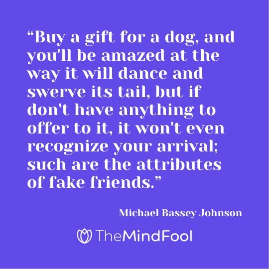 """Buy a gift for a dog, and you'll be amazed at the way it will dance and swerve its tail, but if don't have anything to offer to it, it won't even recognize your arrival; such are the attributes of fake friends."" – Michael Bassey Johnson"