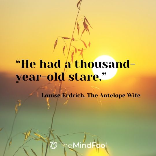 """He had a thousand-year-old stare."" ― Louise Erdrich, The Antelope Wife"