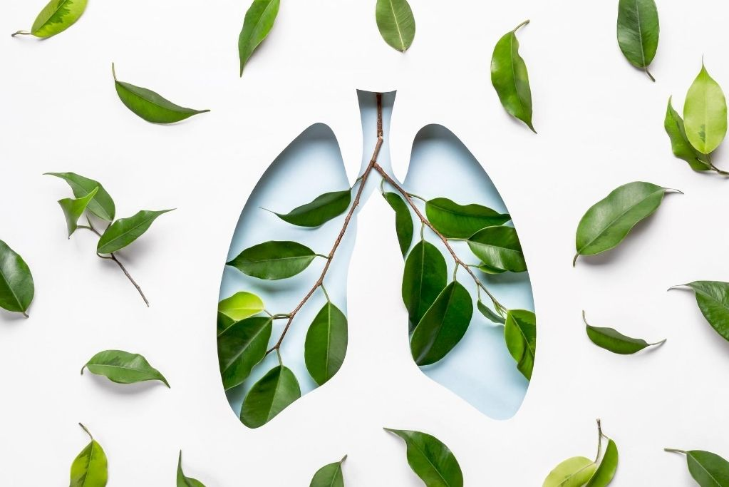 Breathe Awareness