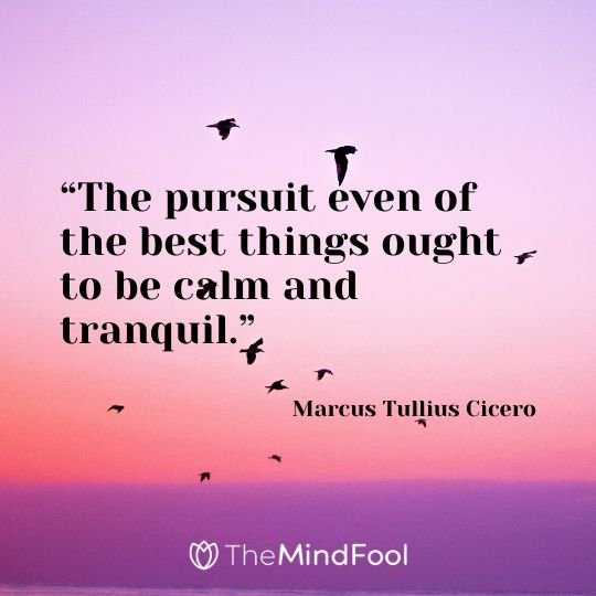 """The pursuit even of the best things ought to be calm and tranquil."" – Marcus Tullius Cicero"