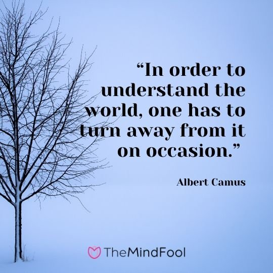 """In order to understand the world, one has to turn away from it on occasion."" - Albert Camus"