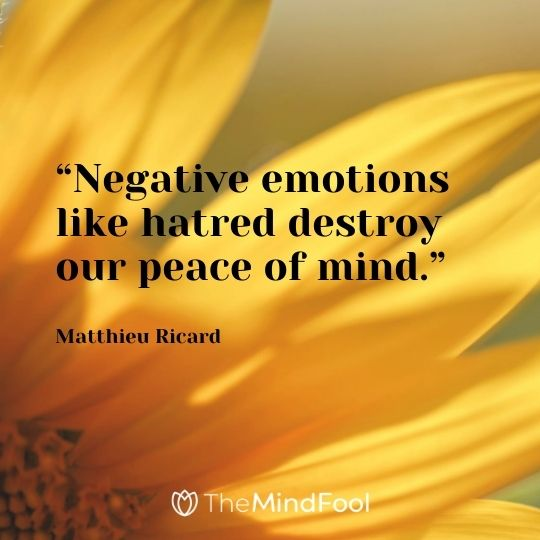 """Negative emotions like hatred destroy our peace of mind."" – Matthieu Ricard"