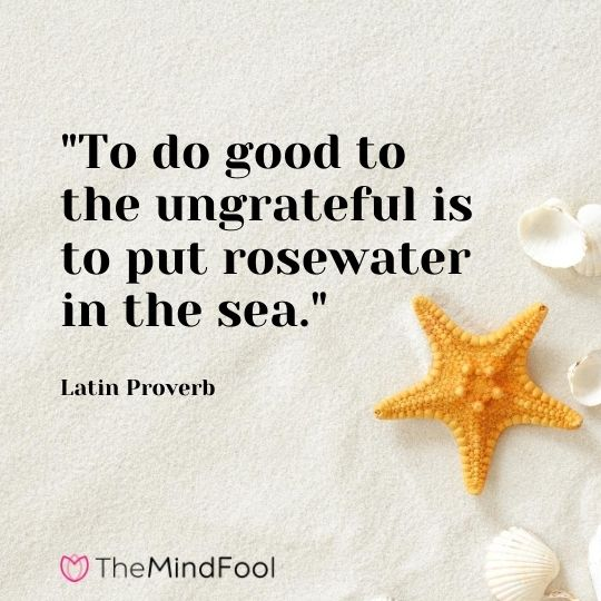 """To do good to the ungrateful is to put rosewater in the sea."" - Latin Proverb"