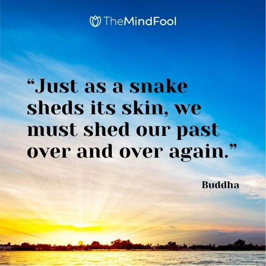 """Just as a snake sheds its skin, we must shed our past over and over again."" - Buddha"