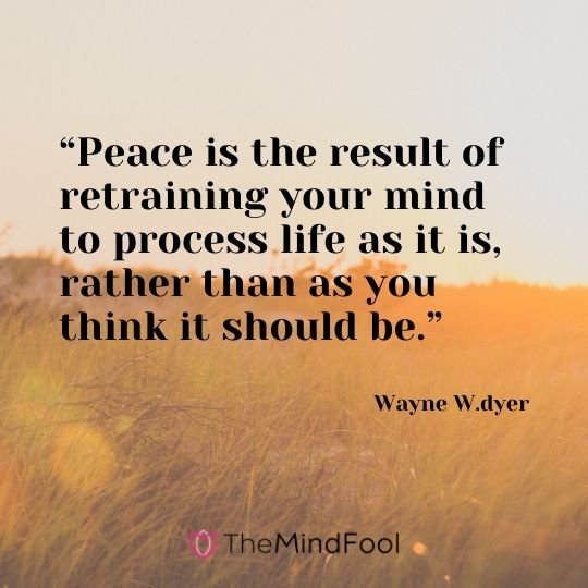 """Peace is the result of retraining your mind to process life as it is, rather than as you think it should be."" – Wayne W.dyer"