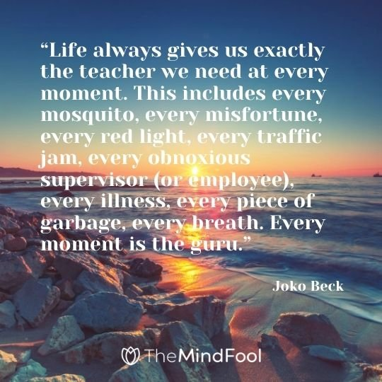 """Life always gives us exactly the teacher we need at every moment. This includes every mosquito, every misfortune, every red light, every traffic jam, every obnoxious supervisor (or employee), every illness, every piece of garbage, every breath. Every moment is the guru."" - Joko Beck"
