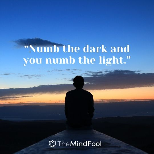 """Numb the dark and you numb the light."""