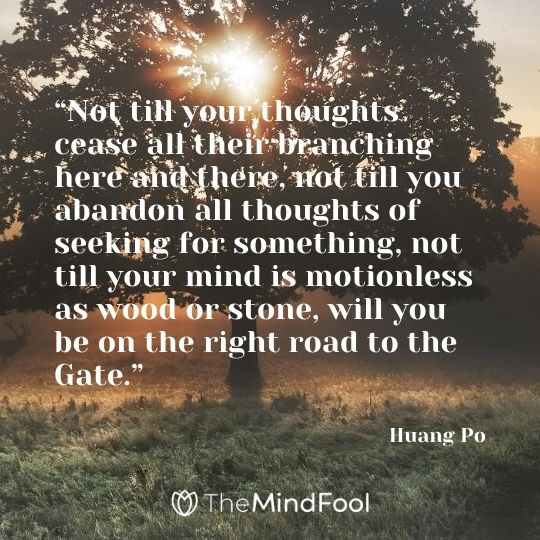 """Not till your thoughts cease all their branching here and there, not till you abandon all thoughts of seeking for something, not till your mind is motionless as wood or stone, will you be on the right road to the Gate."" - Huang Po"