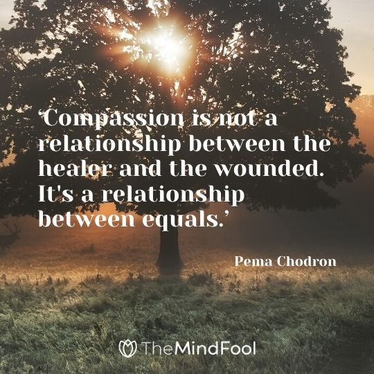 'Compassion is not a relationship between the healer and the wounded. It's a relationship between equals.' - Pema Chodron