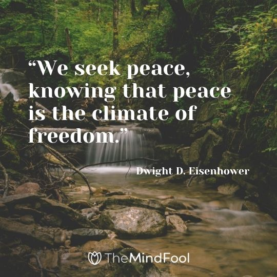 """We seek peace, knowing that peace is the climate of freedom."" – Dwight D. Eisenhower"