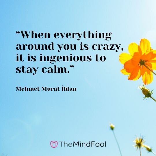 """When everything around you is crazy, it is ingenious to stay calm."" – Mehmet Murat İldan"