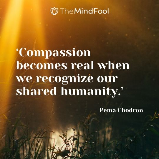'Compassion becomes real when we recognize our shared humanity.' - Pema Chodron