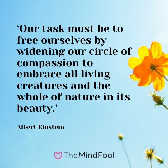'Our task must be to free ourselves by widening our circle of compassion to embrace all living creatures and the whole of nature in its beauty.' - Albert Einstein
