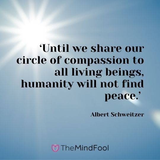 'Until we share our circle of compassion to all living beings, humanity will not find peace.' - Albert Schweitzer