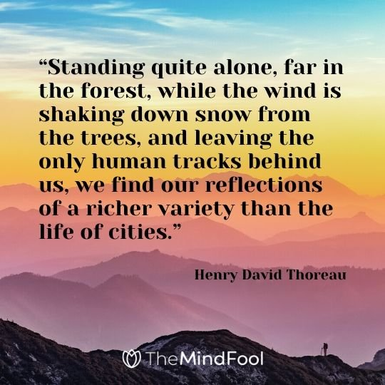 """Standing quite alone, far in the forest, while the wind is shaking down snow from the trees, and leaving the only human tracks behind us, we find our reflections of a richer variety than the life of cities."" - Henry David Thoreau"