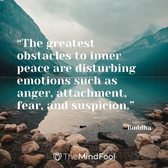 """The greatest obstacles to inner peace are disturbing emotions such as anger, attachment, fear, and suspicion."" - Buddha"