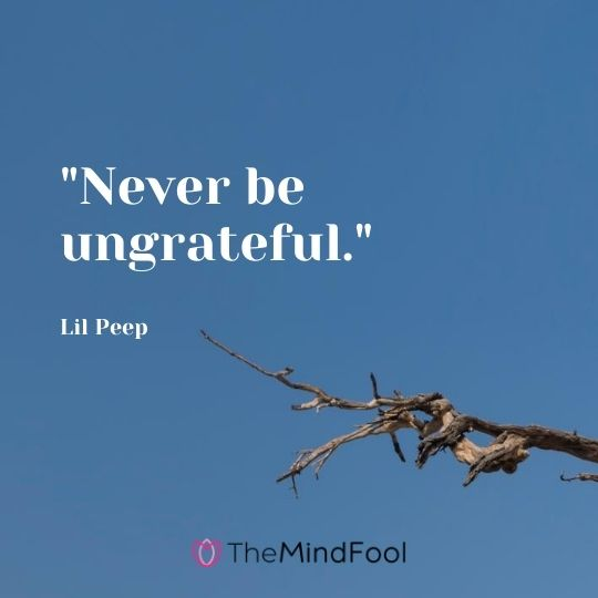 """Never be ungrateful.""-Lil Peep"
