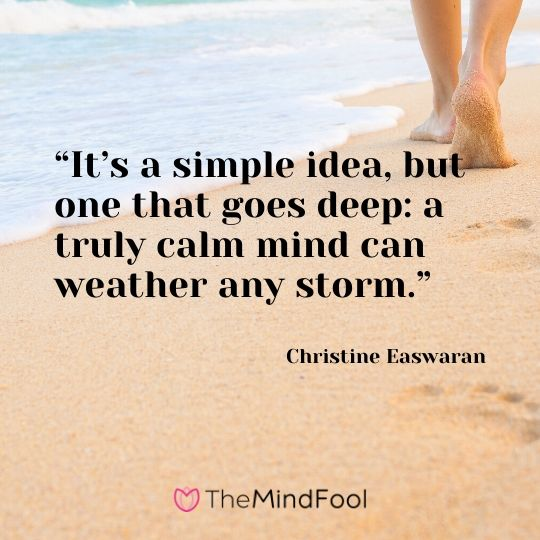 """It's a simple idea, but one that goes deep: a truly calm mind can weather any storm."" – Christine Easwaran"