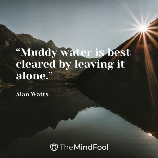 """Muddy water is best cleared by leaving it alone."" - Alan Watts"