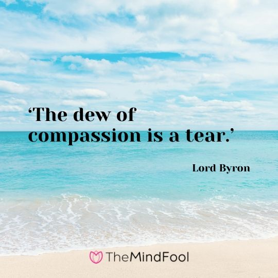 'The dew of compassion is a tear.' – Lord Byron