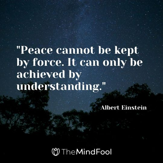"""""""Peace cannot be kept by force. It can only be achieved by understanding."""" - Albert Einstein"""