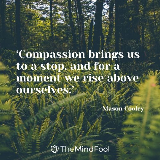 'Compassion brings us to a stop, and for a moment we rise above ourselves.' – Mason Cooley