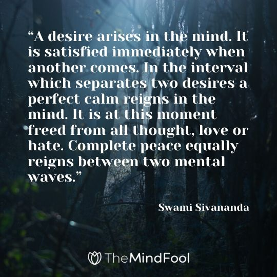 """A desire arises in the mind. It is satisfied immediately when another comes. In the interval which separates two desires a perfect calm reigns in the mind. It is at this moment freed from all thought, love or hate. Complete peace equally reigns between two mental waves."" – Swami Sivananda"