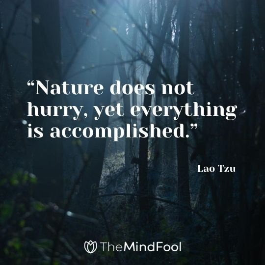 """Nature does not hurry, yet everything is accomplished."" ― Lao Tzu"